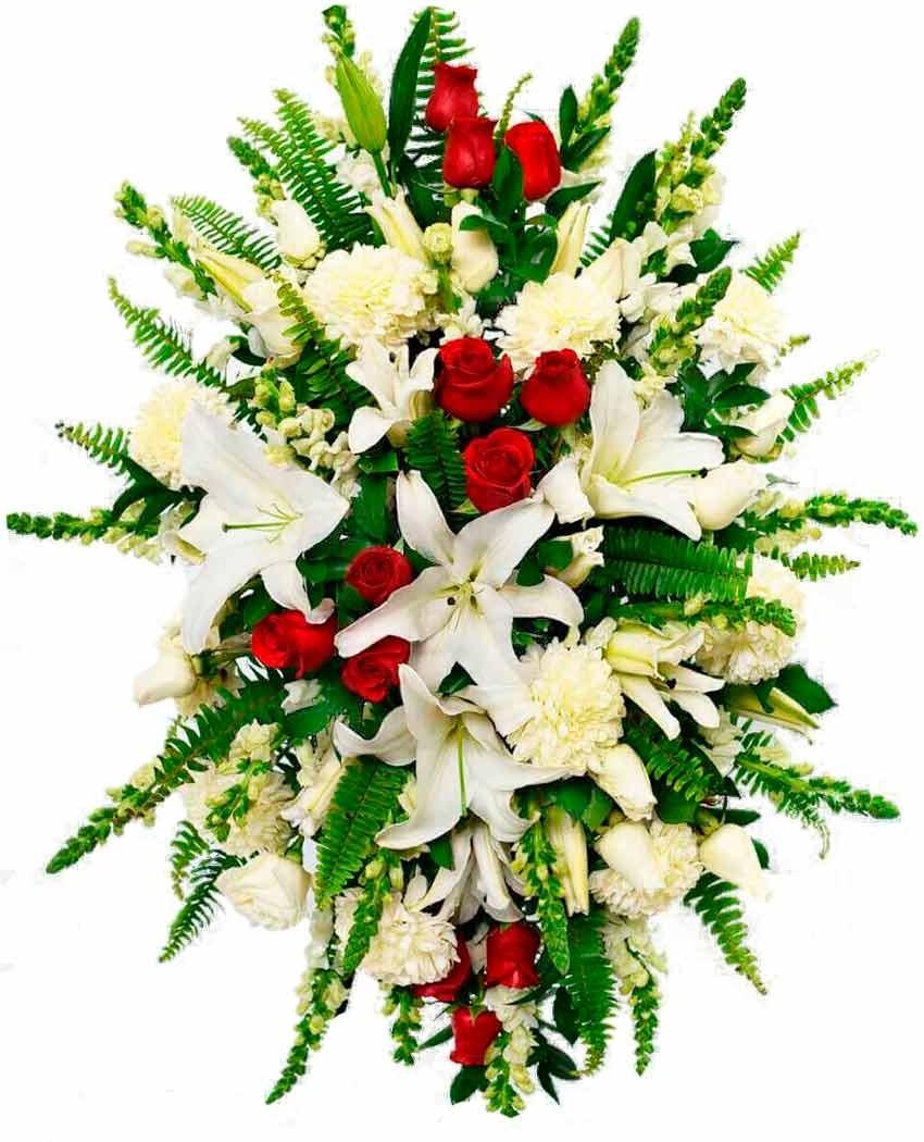 Palma fúnebre para tanatorio la paz en tres cantos